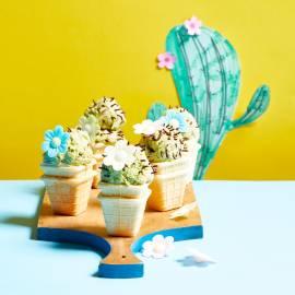 Cactus-ijsjes