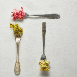 Bietenpesto met mierikswortel, hazelnoten en gorgonzola