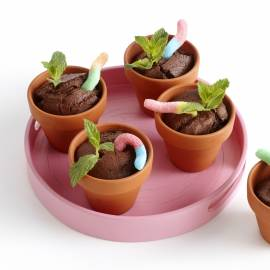Chocolade bloempotcakejes